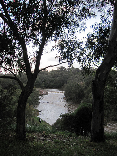 Yarra at Dight's Falls 52/20/2